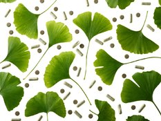 Skinquiry: skin benefits of ginkgo biloba