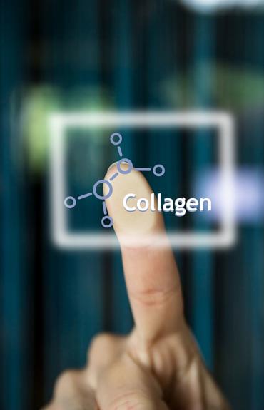 Κολλαγόνο: Όλα όσα πρέπει να ξέρετε